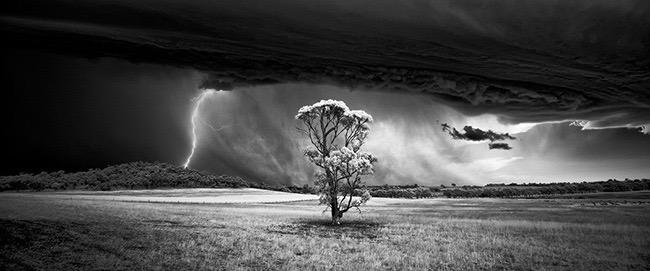 Monochrome Photographer of the Year (Professional), Barossa Bolt by Luke Tscharke (Australia)