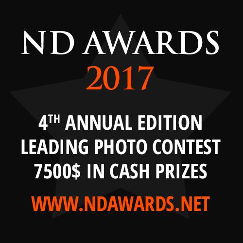 ND Awards 2017 - logo