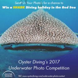 Underwater Photo Competition - logo