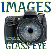 Images from a Glass Eye International Juried Photography Show - logo
