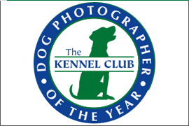 Kennel Club Dog Photographer of the Year competition - logo
