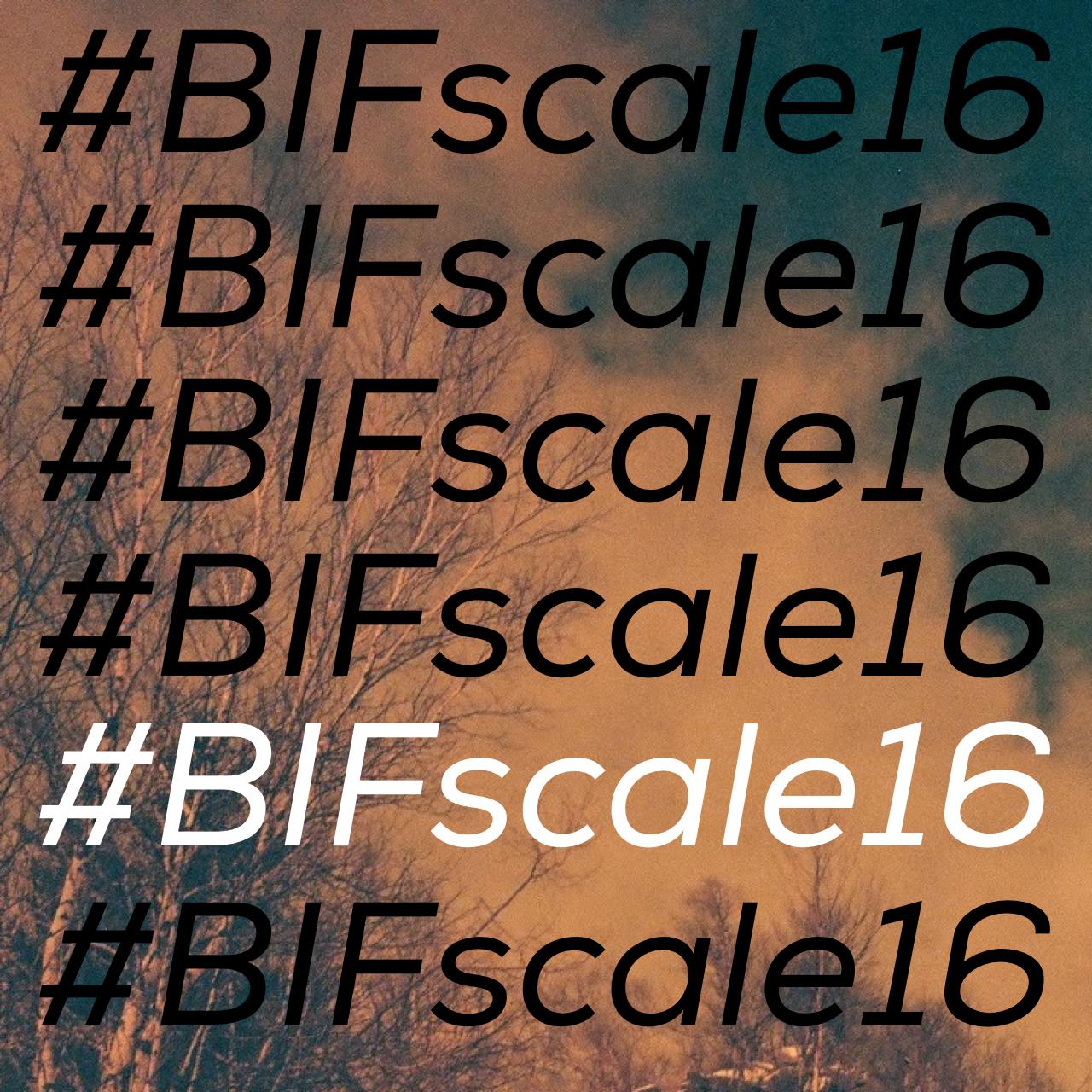 Do It Backwards #BIFscale16 - logo