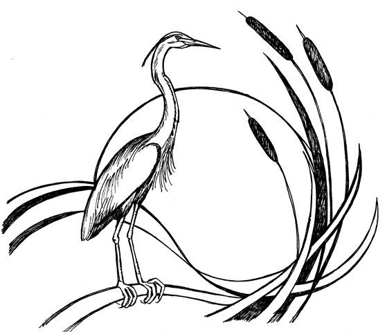 Jamestown (NY) Audubon Society 2016 Nature Photography Contest - logo