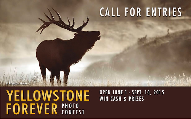 Yellowstone Forever Photo Contest 2016 - logo