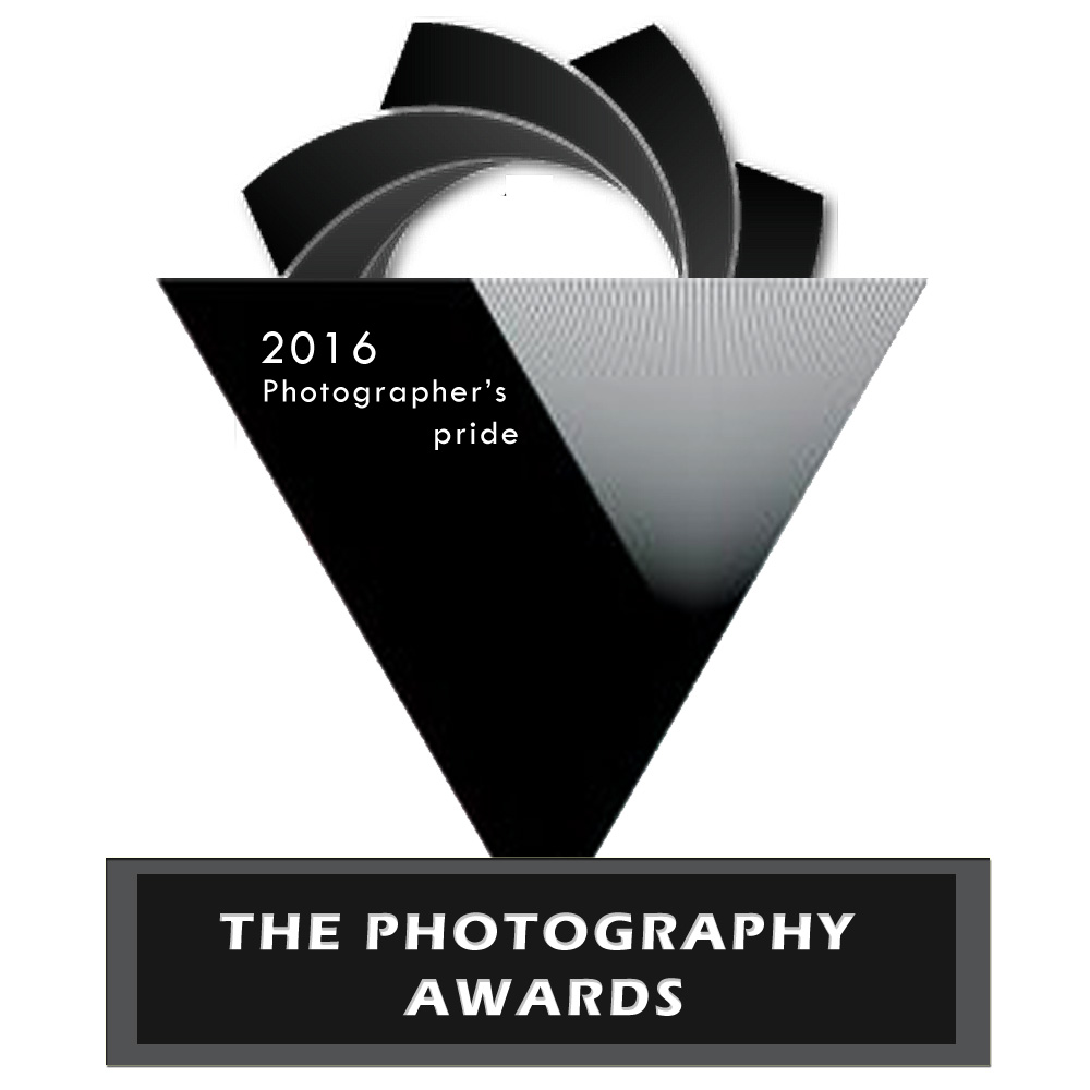 The Photography Awards - logo