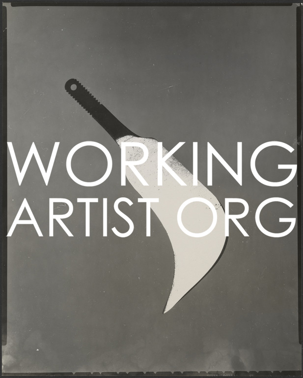 Working Artist Photography Award | Call for Submissions Deadline – October 17, 2016 - logo