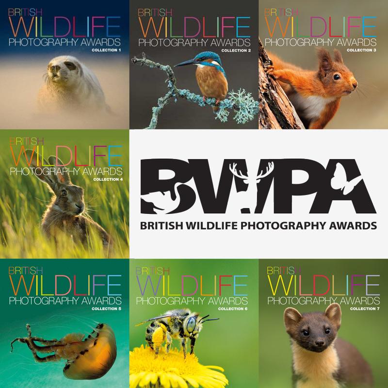 British Wildlife Photography Awards 2017 - logo