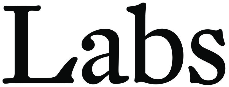 Labs New Artists - logo