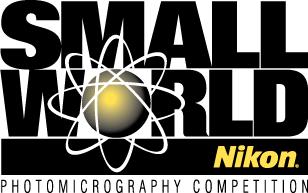 Nikon Small World Competition 2018 - logo