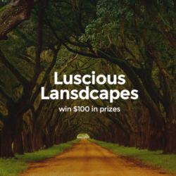 Luscious Landscapes - logo