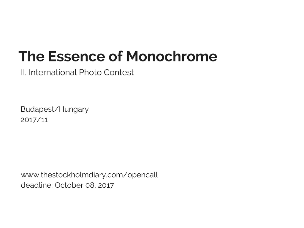 The Essence of Monochrome - logo
