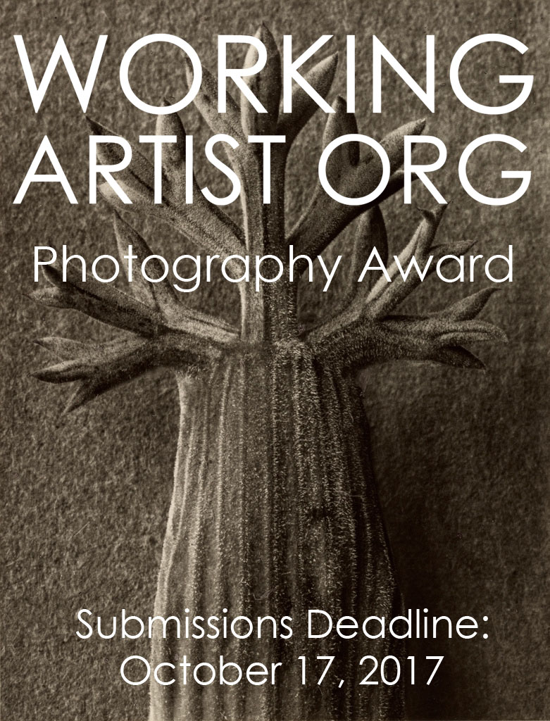The Working Artist Photography Award $1000.00 | Call for Submissions Deadline - logo