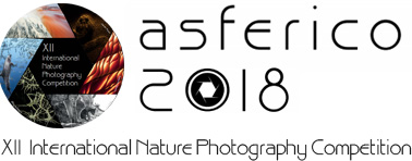 XII International Nature Photography Competition ASFERICO 2018 - logo
