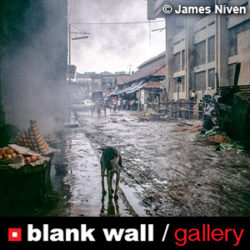 Street Photography by Blank Wall Gallery - logo