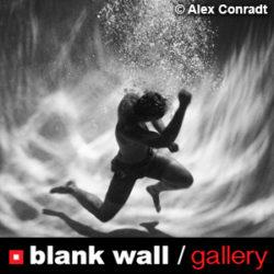Monochrome by Blank Wall Gallery - logo