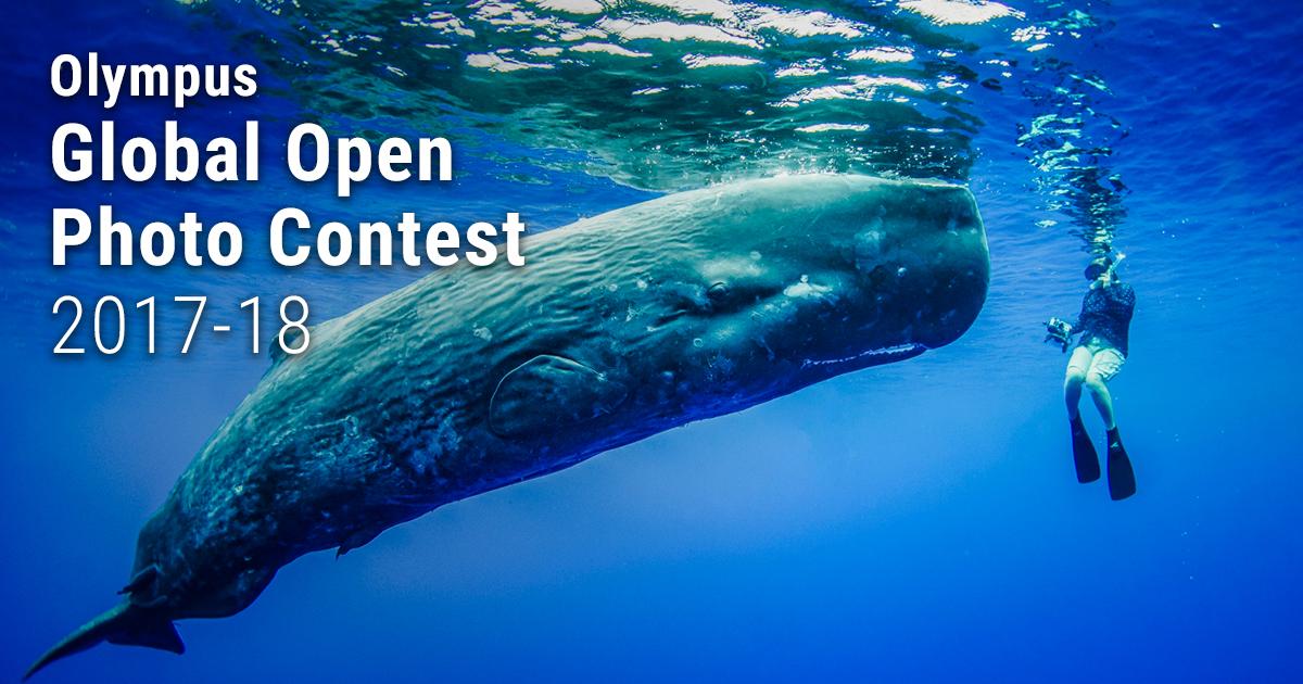 Olympus Global Open Photo Contest 2017-18 - logo