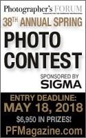 Photographers Forum's 38th Spring Photo Contest - logo