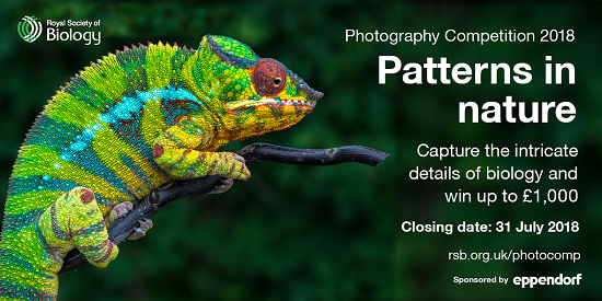 Royal Society of Biology Photography Competition 2018 - logo