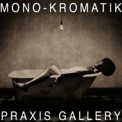 THEME | MONO – KROMATIK - logo