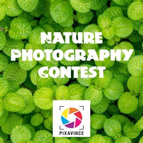 Nature Photography Contest July 2018 - logo