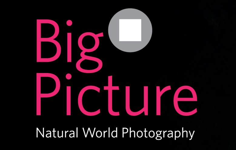 BigPicture Natural World Photography Competition 2019 - logo