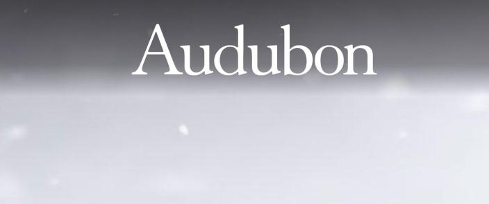 Audubon Photography Awards 2019 - logo