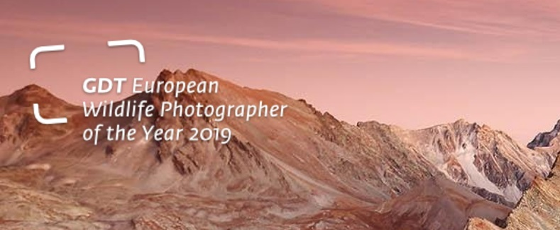 GDT European Wildlife Photographer of the Year 2019 - logo