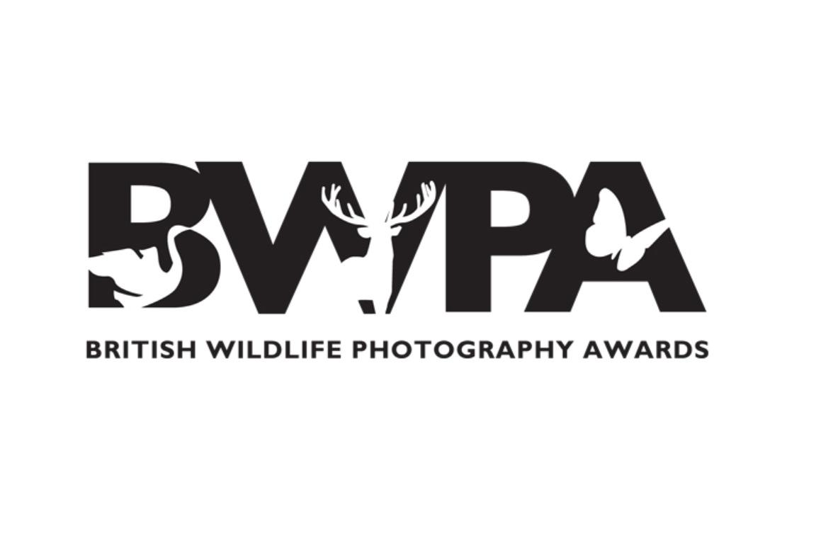 British Wildlife Photography Awards 2019 - logo