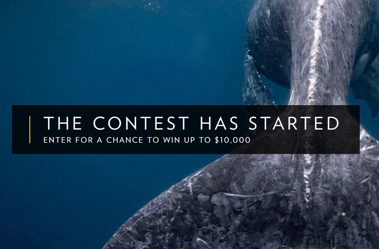 2019 National Geographic Travel Photo Contest - logo