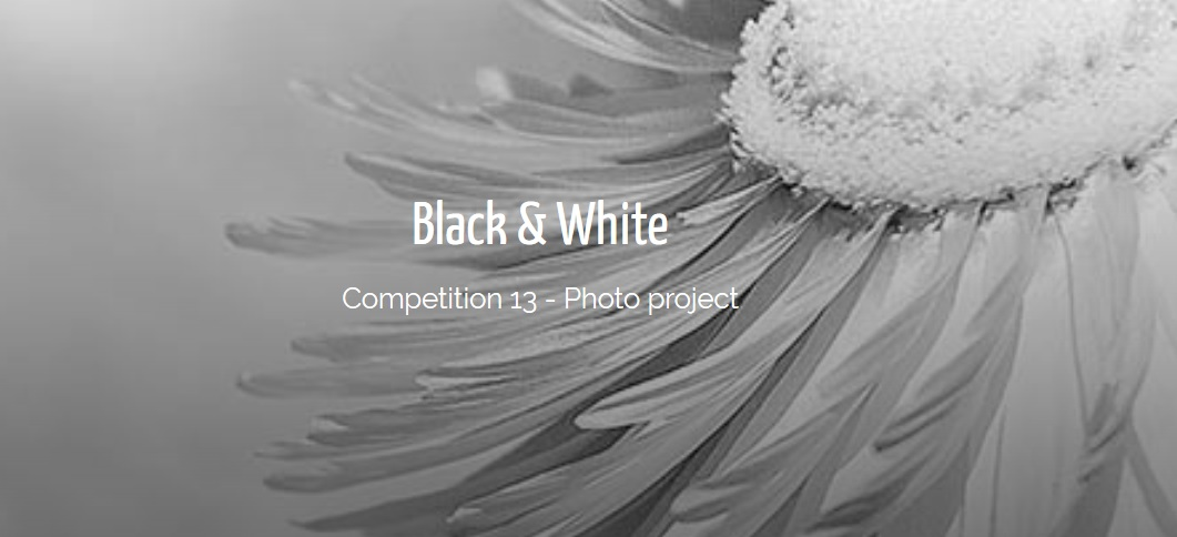 IGPOTY – Black & White Competition 2019 - logo