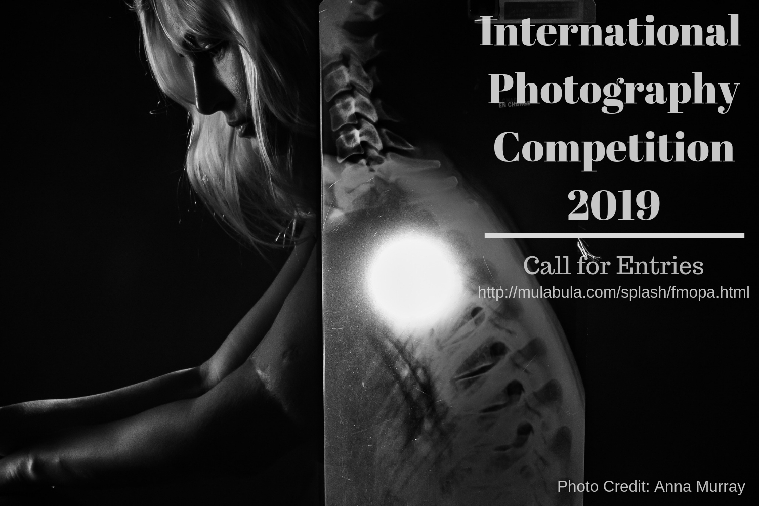 International Photography Contest - logo