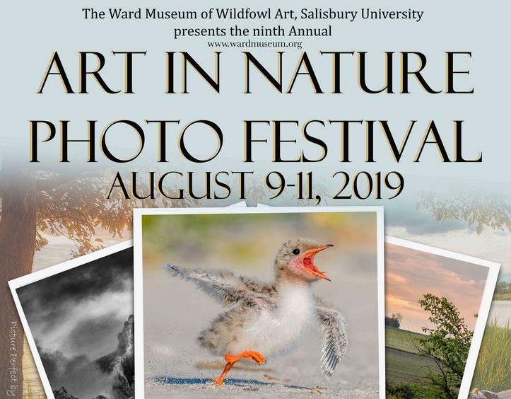 9th Annual Art in Nature Photo Festival - logo