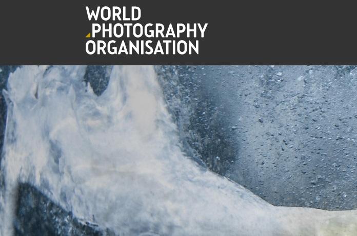 2020 Sony World Photography Awards - logo