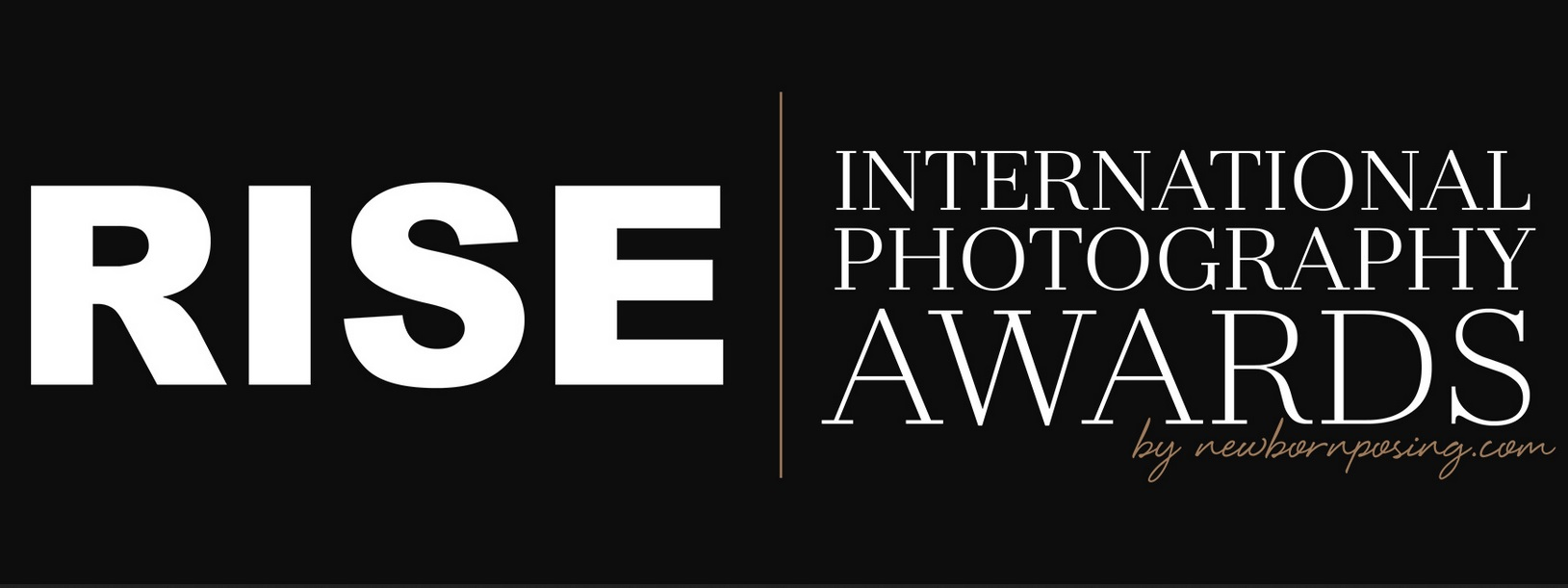 Rise International Photography Awards 2019 - logo