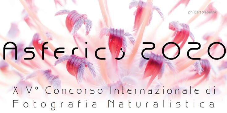 XIV International Nature Photography Competition ASFERICO 2020 - logo