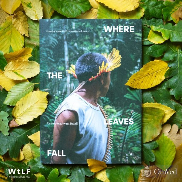 Where the Leaves Fall - exploring out connection with nature