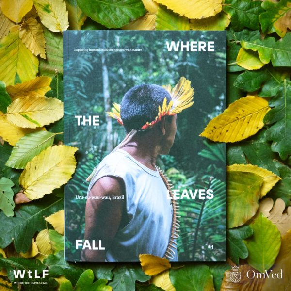 Where the Leaves Fall – exploring out connection with nature - logo