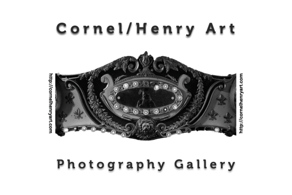 Cornel/Henry Art 2020 Artist Award Call for Entries - logo