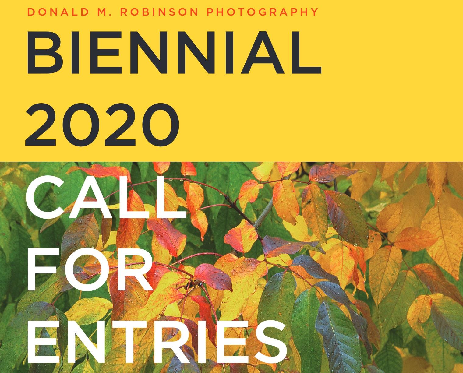 Donald M. Robinson Photography Biennial 2020 - logo