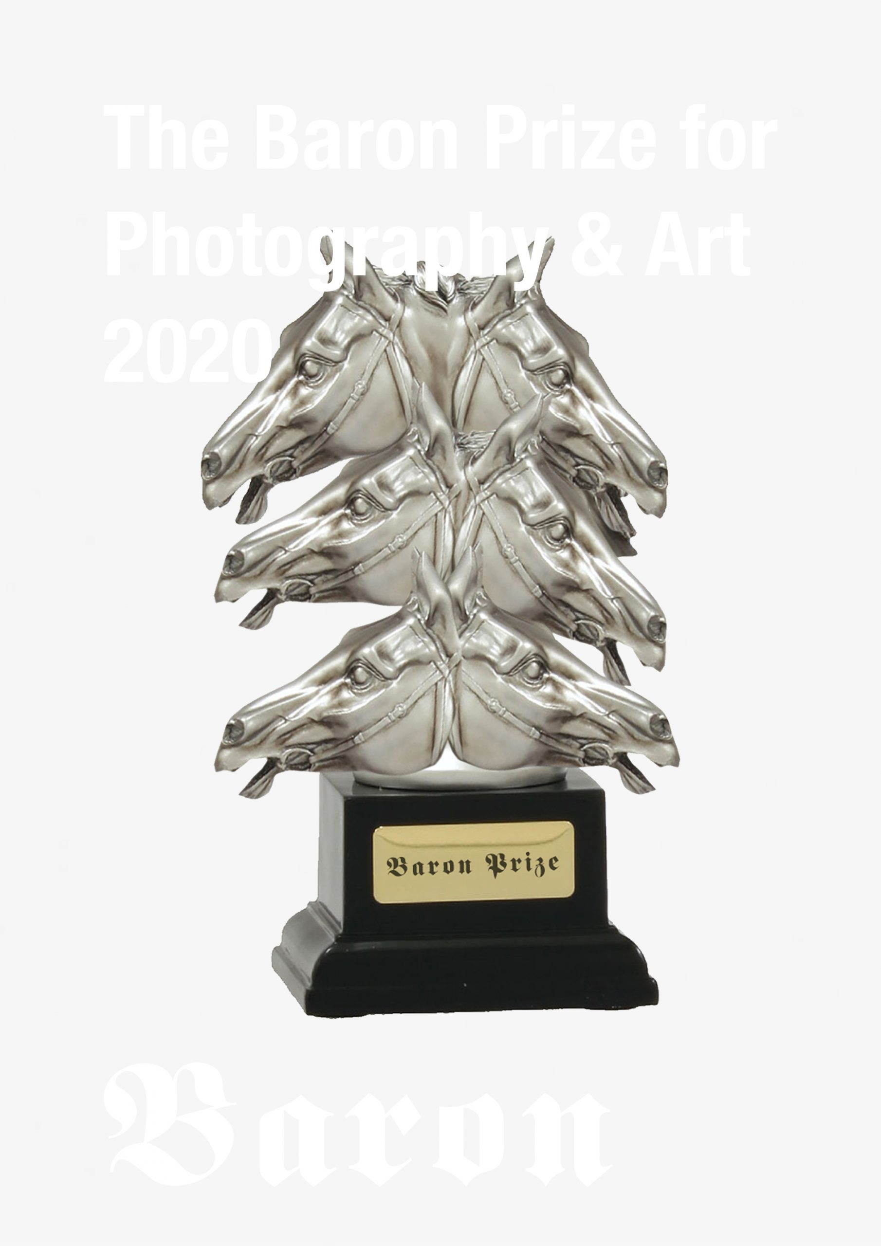 The Baron Prize for Art and Photography 2020 - logo