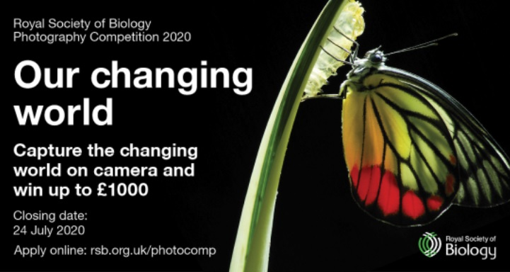 Royal Society of Biology Photo Competition 2020 - logo