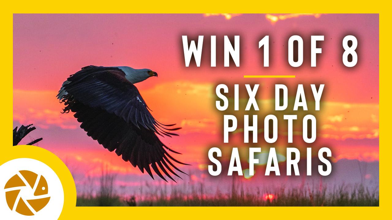 Vision 2020 photo contest by Pangolin Photo Safaris - logo