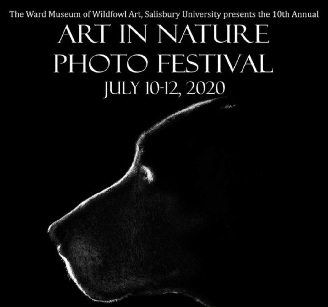 10th Annual Art in Nature Photo Festival 2020 - logo