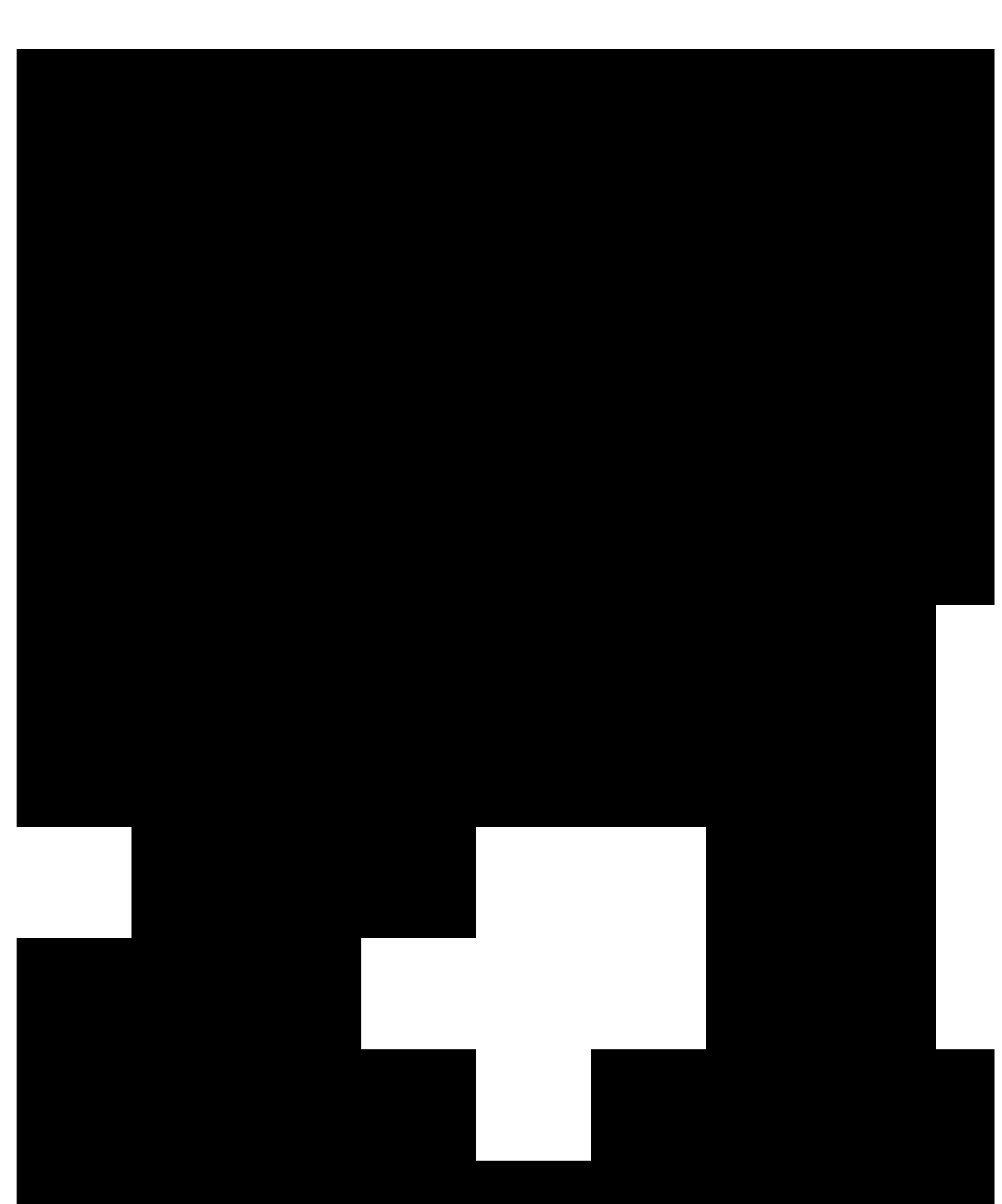 Noir Blanc 21 - logo