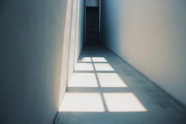 Dynamic: Shadow and Light - logo