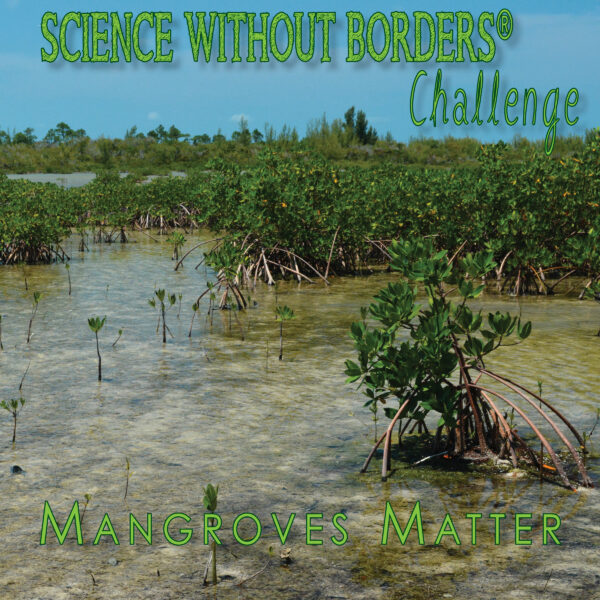 2021 Science Without Borders® Challenge – International Student Art Contest - logo