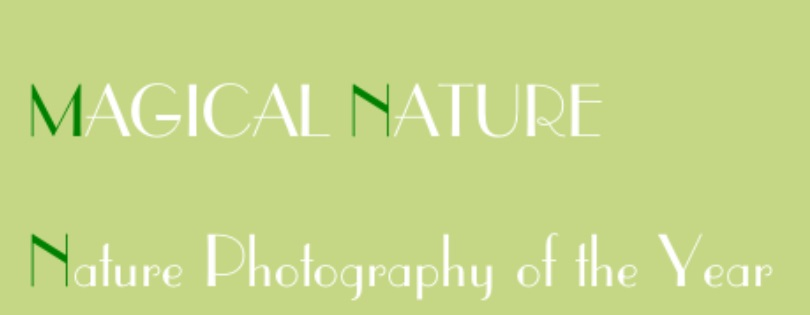 Magical Nature – Nature Photography of the Year 2021 - logo