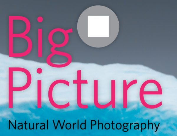 BigPicture Natural World Photography 2021