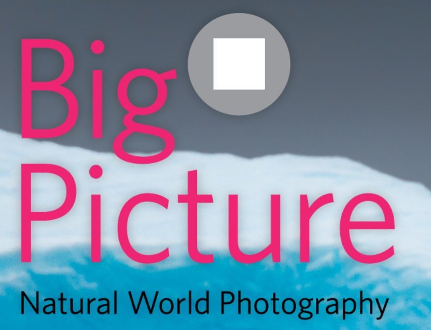 BigPicture Natural World Photography 2021 - logo