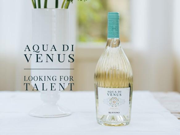 Aqua di Venus Looking for Talent - logo